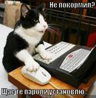 https://lolkot.ru/2009/06/08/ne-pokormil/