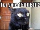 https://lolkot.ru/2010/05/20/150lvl/