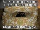 https://lolkot.ru/2011/03/27/a-myshi-vse-idut-i-idut/