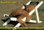 https://lolkot.ru/2012/07/15/a-telo-na-rabotu/