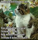 https://lolkot.ru/2013/11/11/a-v-nebe-golubom-gorit-odna-zvezda/