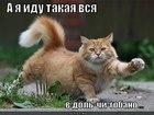 https://lolkot.ru/2012/07/12/a-ya-idu/