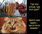 https://lolkot.ru/2014/01/29/adresok-ne-podskazhete/