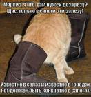 https://lolkot.ru/2013/10/20/ah-v-zimnih-sapogah/