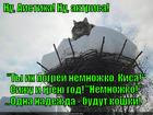 https://lolkot.ru/2014/12/06/aist-s-kukushkinymi-zamashkami/