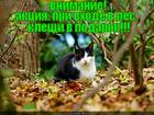 https://lolkot.ru/2012/09/09/aktsiya-3/