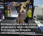 https://lolkot.ru/2015/07/08/antidiyetu-mne-srochno/
