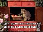 https://lolkot.ru/2014/04/23/arenda-shkafa/