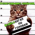 https://lolkot.ru/2017/01/21/atlet-na-karernoy-lestnitse/