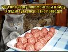 https://lolkot.ru/2014/06/06/auditoru-mzdu/
