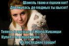https://lolkot.ru/2014/12/12/avtonomnyy-vorotnichek/