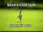 https://lolkot.ru/2011/02/28/begi-k-schastyu/