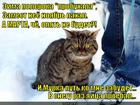 https://lolkot.ru/2014/01/23/beregite-faberzhe/