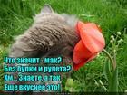 https://lolkot.ru/2020/06/17/bezbulochnaya-vkusnota/