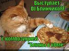 https://lolkot.ru/2014/01/05/bliny-v-kome-slushateli-v-transe/