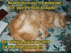 https://lolkot.ru/2013/04/24/blizok-lokot-da-zub-neymyot/
