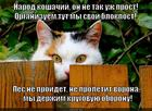 https://lolkot.ru/2014/04/21/blohpost/