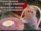https://lolkot.ru/2013/11/03/blyudo-dnya/