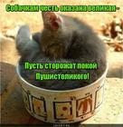 https://lolkot.ru/2017/08/03/bodigavd-2/