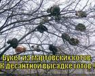 https://lolkot.ru/2012/10/07/buket-iz-martovskih-kotov/