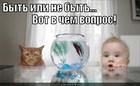 https://lolkot.ru/2011/11/14/byt-ili-ne-byt/