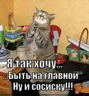 https://lolkot.ru/2011/09/26/byt-na-glavnoy/