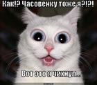 https://lolkot.ru/2010/10/14/chasovenku-tozhe-ya/