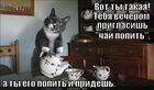 https://lolkot.ru/2012/08/29/chay-popit/