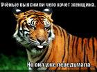 https://lolkot.ru/2011/06/01/chego-hochet-zhenschina/