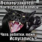 https://lolkot.ru/2013/12/12/chego-ispugalis/