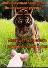 https://lolkot.ru/2015/01/22/chestnyy-tigra/