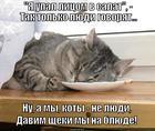 https://lolkot.ru/2014/11/29/chto-pozvoleno-yupiteru-to-ne-pozvoleno-byku/
