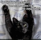 https://lolkot.ru/2012/08/23/chto-ugodno/