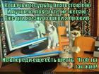 https://lolkot.ru/2014/09/12/chtob-ty-tak-zhil/