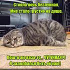 https://lolkot.ru/2016/10/19/chugunen-vazen-shmyak-shmyak/