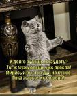 https://lolkot.ru/2014/01/31/davayte-pomirimsya-i-poyedim/