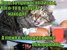 https://lolkot.ru/2014/11/18/ditya-holodilnika/
