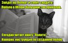 https://lolkot.ru/2015/12/26/dlya-chego-instruktsiya/
