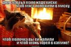 https://lolkot.ru/2012/12/26/dlya-schastya-malo-nado-kiske-chtob-myasa-polozhili-v-misku-chtob-molochka-vy-yey-nalili-i-chtob-ogon-gorel-v-kamine/