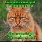 https://lolkot.ru/2018/09/10/dnkovoye-sredstvo-oborony/