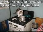 https://lolkot.ru/2012/11/27/dobavil/