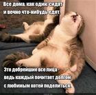 https://lolkot.ru/2020/05/05/dobreyshiye-deliteli/