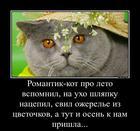 https://lolkot.ru/2016/10/29/dolgaya-podgotovka/
