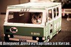 https://lolkot.ru/2011/01/31/doma-iz-kartona/
