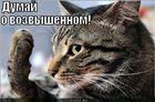 https://lolkot.ru/2010/10/24/dumay-o-vozvyshennom/
