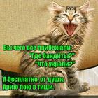 https://lolkot.ru/2019/06/25/dushevnaya-pugatelnaya/