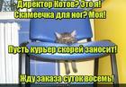 https://lolkot.ru/2019/11/01/ergonomichnaya-obstanovka/