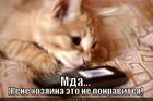 https://lolkot.ru/2012/06/17/eto-ne-ponravitsya/