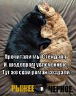 https://lolkot.ru/2014/01/18/fanfik/