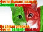 https://lolkot.ru/2011/04/04/fignya/